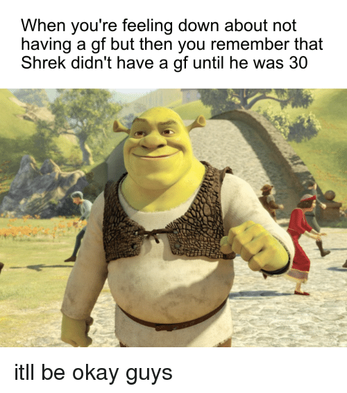 feeling down: When you're feeling down about not  having a gf but then you remember that  Shrek didn't have a gf until he was 30 itll be okay guys