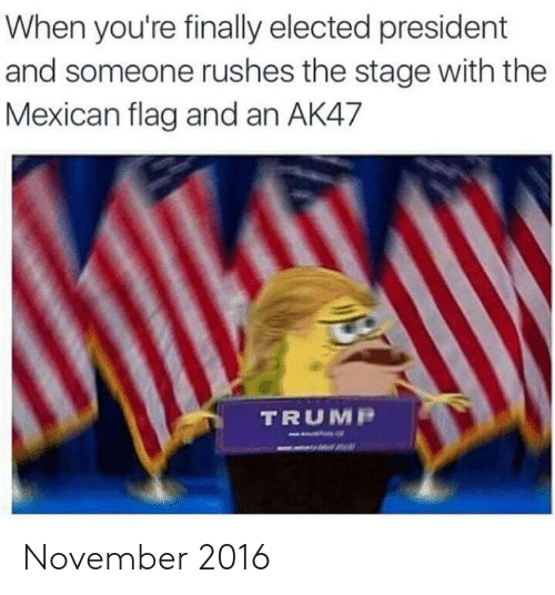 mexican flag: When you're finally elected president  and someone rushes the stage with the  Mexican flag and an AK47  TRUMP November 2016