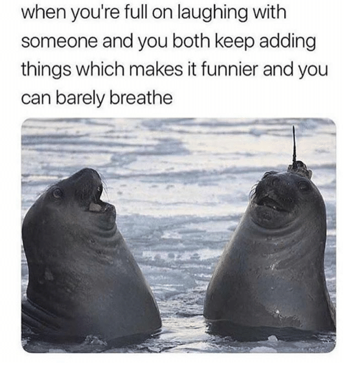 Dank, 🤖, and Can: when you're full on laughing with  someone and you both keep adding  things which makes it funnier and you  can barely breathe