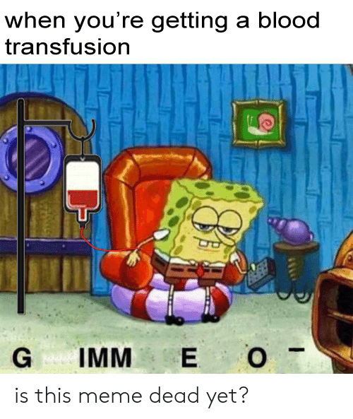 blood transfusion: when you're getting a blood  transfusion  IMM E O is this meme dead yet?