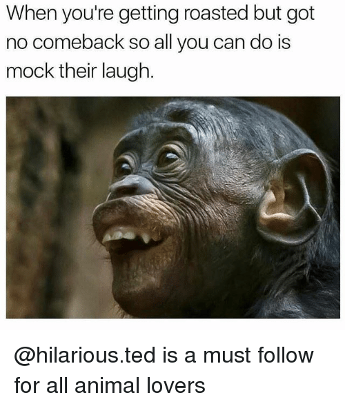 Memes, Ted, and Animal: When you're getting roasted but got  no comeback so all you can do is  mock their laugh. @hilarious.ted is a must follow for all animal lovers