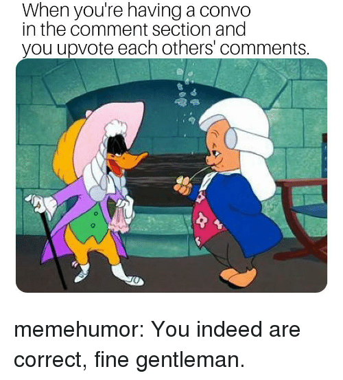 The Comment Section: When you're having a convo  in the comment section and  you upvote each others' comments memehumor:  You indeed are correct, fine gentleman.