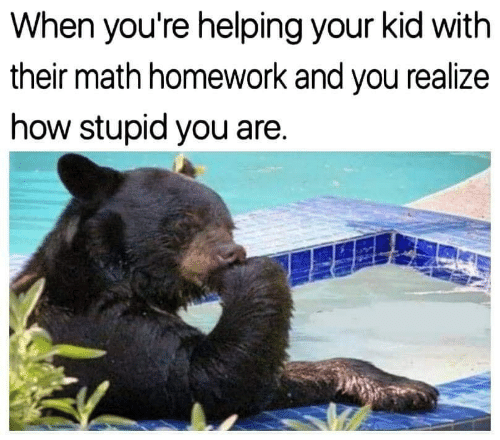 Math Homework: When you're helping your kid with  their math homework and you realize  how stupid you are