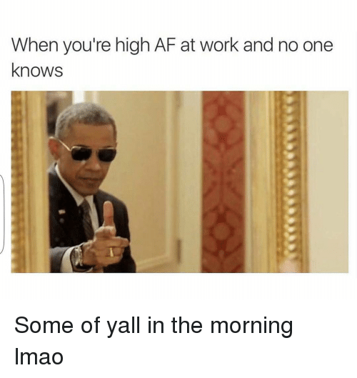 Af, Funny, and Lmao: When you're high AF at work and no one  knows Some of yall in the morning lmao