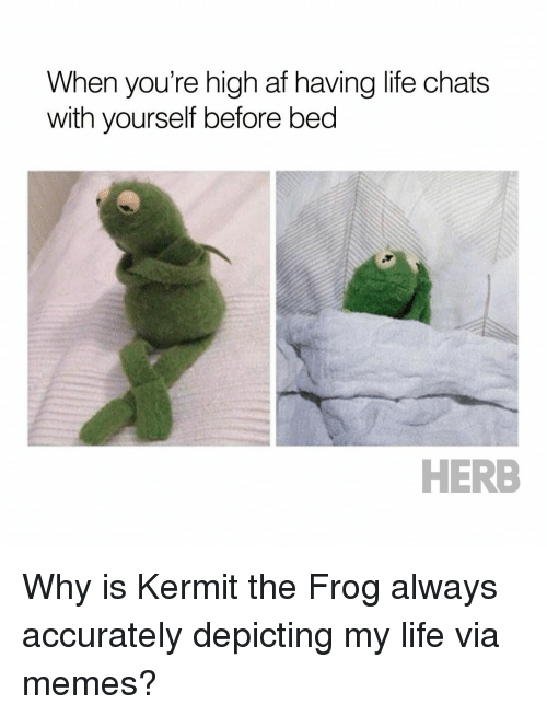 Kermit the Frog, Memes, and High AF: When you're high af having life chats  with yourself before bed  HERB Why is Kermit the Frog always accurately depicting my life via memes?