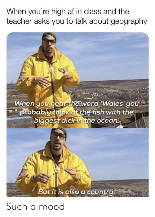 Biggest Dick: When you're high af in class and the  teacher asks you to talk about geography  When you hearheword Wales' you  probably think of the fish with the  biggest dick in the ocean.  But it is also a country Such a mood