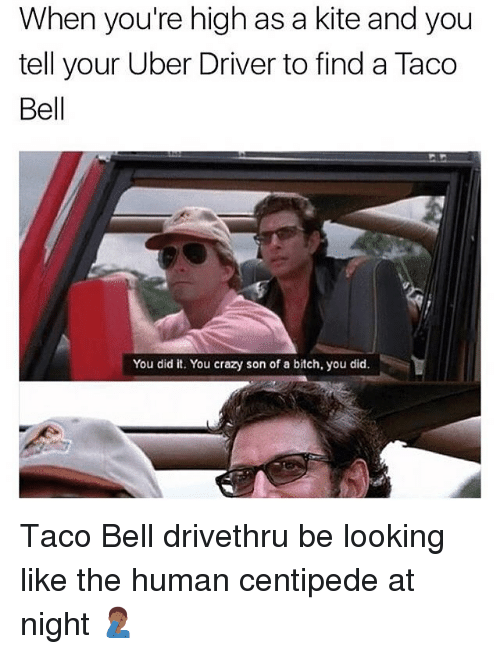 Bitch, Crazy, and Taco Bell: When you're high as a kite and you  tell your Uber Driver to find a Taco  Bell  You did it. You crazy son of a bitch, you did. Taco Bell drivethru be looking like the human centipede at night 🤦🏾‍♂️