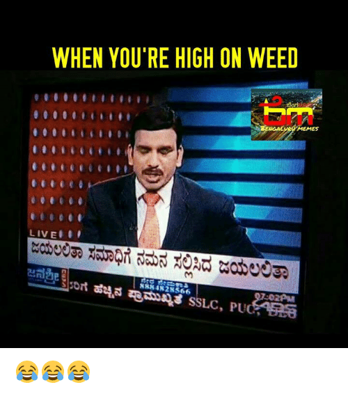 Your Highness: WHEN YOU'RE HIGH ON WEED  Eyeg MEMES  LIVE  NRKAN 28566 😂😂😂