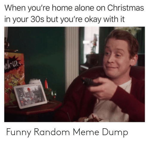 funny random: When you're home alone on Christmas  in your 30s but you're okay with it Funny Random Meme Dump