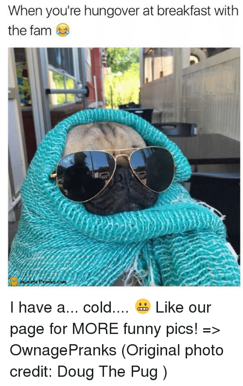 Having A Cold: When you're hungover at breakfast with  the fam I have a... cold.... 😬  Like our page for MORE funny pics! => OwnagePranks  (Original photo credit: Doug The Pug )