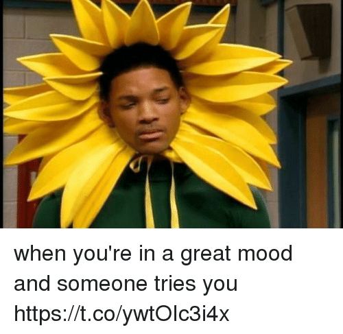 Mood, Girl Memes, and Aed: when you're in a great mood and someone tries you https://t.co/ywtOIc3i4x