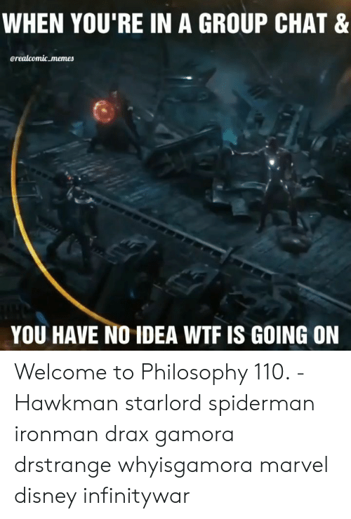 Wtf Is Going On: WHEN YOU'RE IN A GROUP CHAT &  erealcomic memes  YOU HAVE NO IDEA WTF IS GOING ON Welcome to Philosophy 110. -Hawkman starlord spiderman ironman drax gamora drstrange whyisgamora marvel disney infinitywar