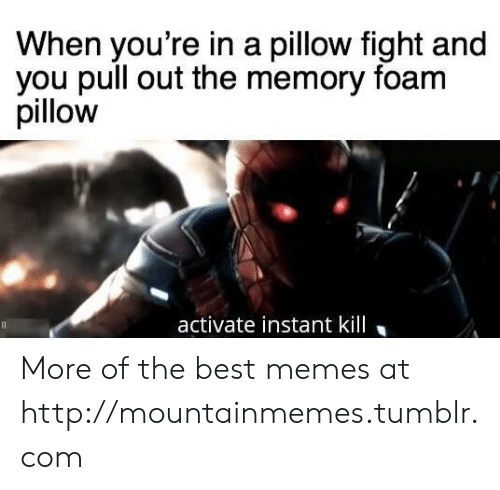 pillow fight: When you're in a pillow fight and  you pull out the memory foam  pillow  activate instant kill More of the best memes at http://mountainmemes.tumblr.com
