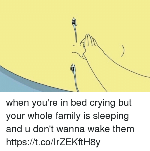 Crying, Family, and Sleeping: when you're in bed crying but your whole family is sleeping and u don't wanna wake them https://t.co/IrZEKftH8y