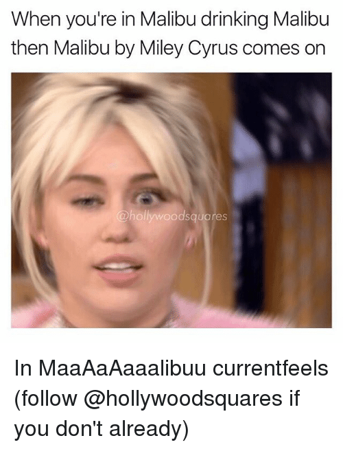 Drinking, Memes, and Miley Cyrus: When you're in Malibu drinking Malibu  then Malibu by Miley Cyrus comes on  odsquares In MaaAaAaaalibuu currentfeels (follow @hollywoodsquares if you don't already)