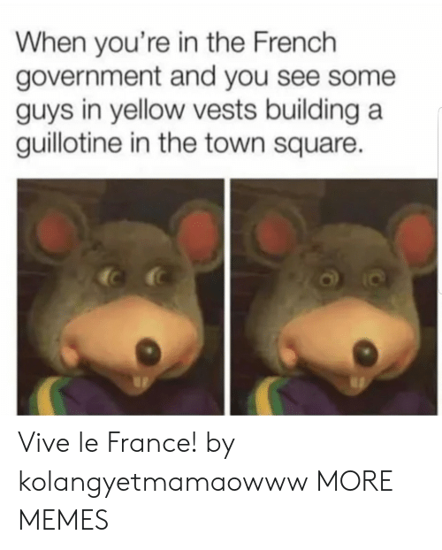 guillotine: When you're in the French  government and you see some  guys in yellow vests building a  guillotine in the town square. Vive le France! by kolangyetmamaowww MORE MEMES