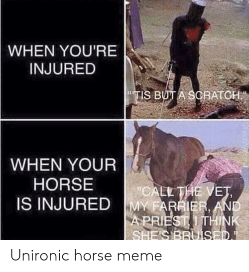 "Horse Meme: WHEN YOU'RE  INJURED  TIS BUT A SCRATCH  WHEN YOUR  HORSE  ""CALL THE VET  MY FARRIER AND  APRIEST THINK  SHE'S BRUISED.  IS INJURED Unironic horse meme"
