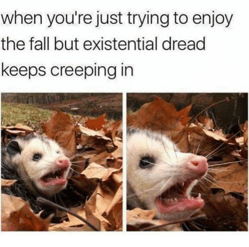 creeping: when you're just trying to enjoy  the fall but existential dread  keeps creeping in