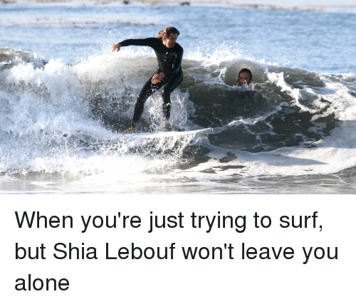 Shia Lebouf: When you're just trying to surf, but Shia Lebouf won't leave you alone