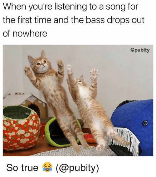 Memes, True, and Time: When you're listening to a song for  the first time and the bass drops out  of nowhere  @pubity So true 😂 (@pubity)