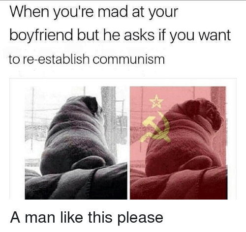 Memes, Boyfriend, and Mad: When you're mad at your  boyfriend but he asks if you want  to re-establish communisnm A man like this please