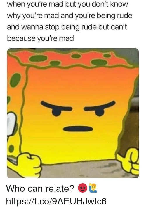 Rude, Mad, and Who: when you're mad but you don't know  why you're mad and you're being rude  and wanna stop being rude but can't  because you're mad Who can relate? 😡🙋‍♂️ https://t.co/9AEUHJwIc6