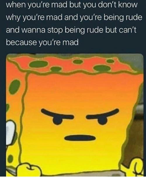 Funny, Rude, and Mad: when you're mad but you don't know  why you're mad and you're being rude  and wanna stop being rude but can't  because you're mad