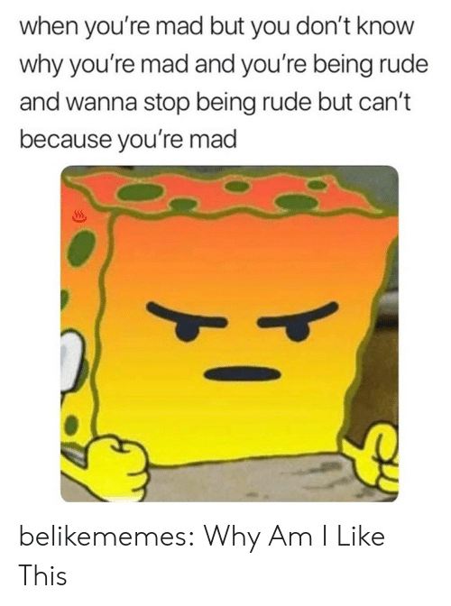 Being Rude: when you're mad but you don't know  why you're mad and you're being rude  and wanna stop being rude but can't  because you're mad belikememes:  Why Am I Like This
