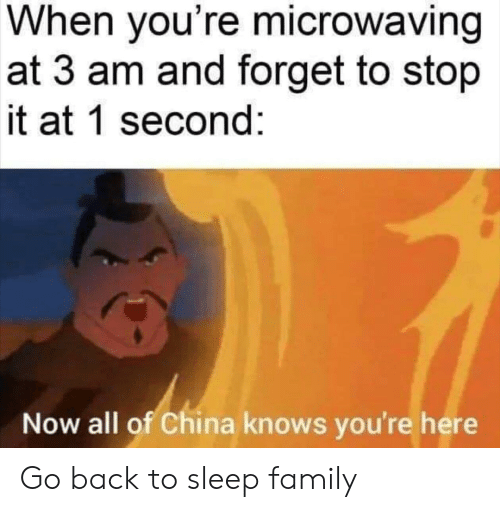 1 Second: When you're microwaving  at 3 am and forget to stop  it at 1 second:  Now all of China knows you're here Go back to sleep family