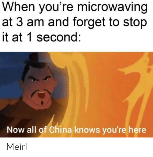 1 Second: When you're microwaving  at 3 am and forget to stop  it at 1 second:  Now all of China knows you're here Meirl