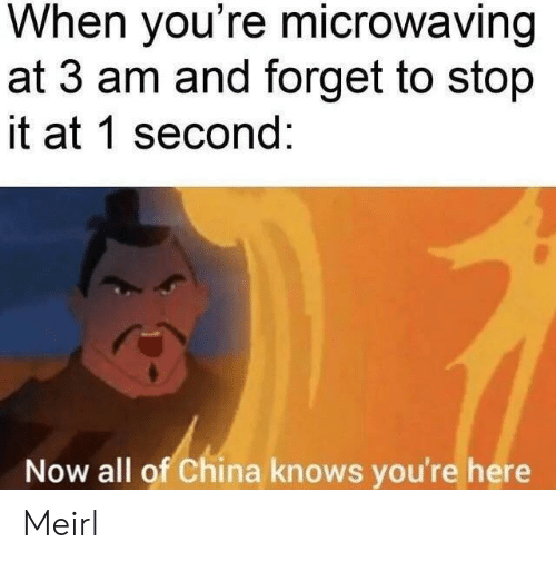 stop it: When you're microwaving  at 3 am and forget to stop  it at 1 second:  Now all of China knows you're here Meirl