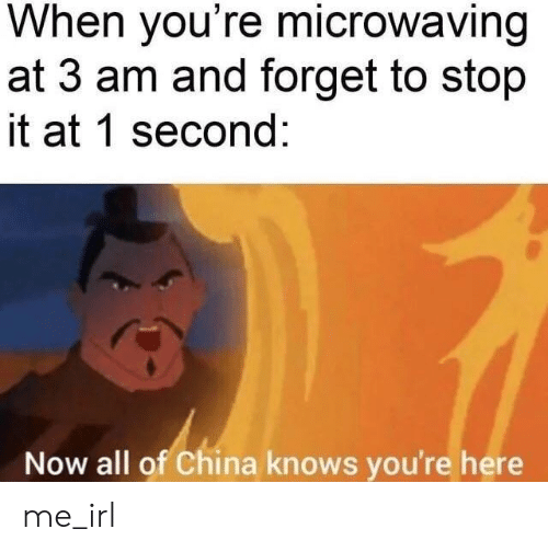 stop it: When you're microwaving  at 3 am and forget to stop  it at 1 second:  Now all of China knows you're here me_irl