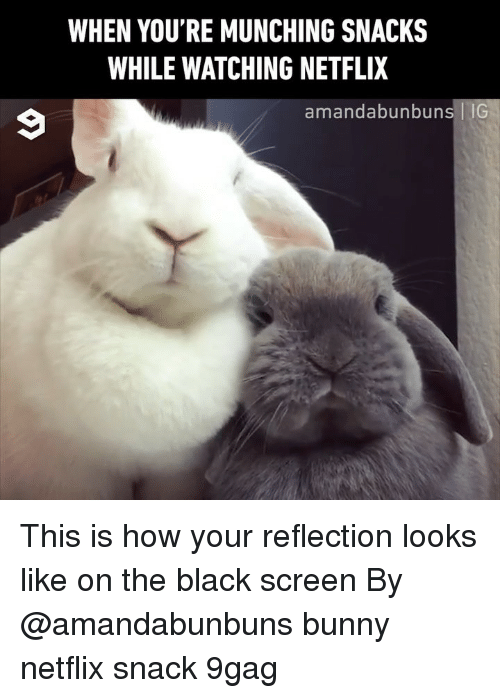 9gag, Memes, and Netflix: WHEN YOU'RE MUNCHING SNACKS  WHILE WATCHING NETFLIX  amandabunbuns |IG This is how your reflection looks like on the black screen By @amandabunbuns bunny netflix snack 9gag