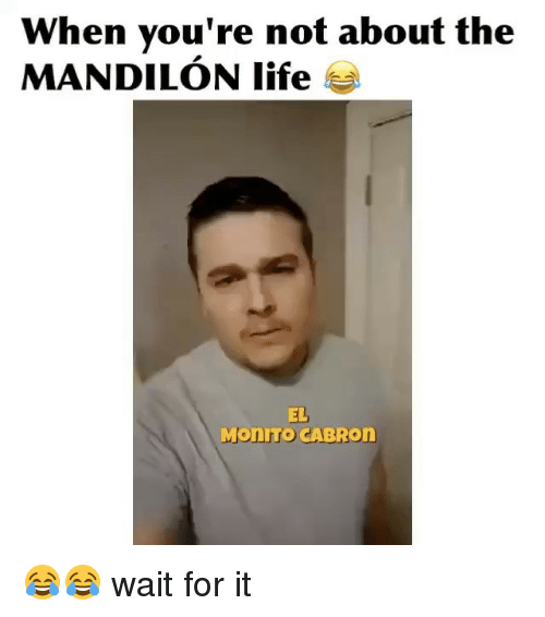 Memes, 🤖, and Monroe: When you're not about the  MANDILON life  EL  Monro CABRon 😂😂 wait for it