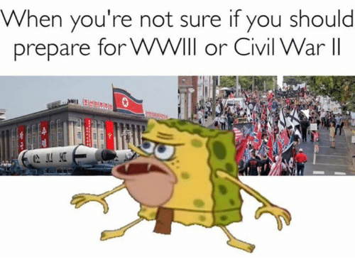 Civil War, Dank Memes, and Civilization: When you're not sure if you should  prepare for WWVll or Civil War lI