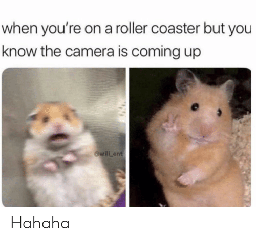 roller coaster: when you're on a roller coaster but you  know the camera is coming up  will ent Hahaha