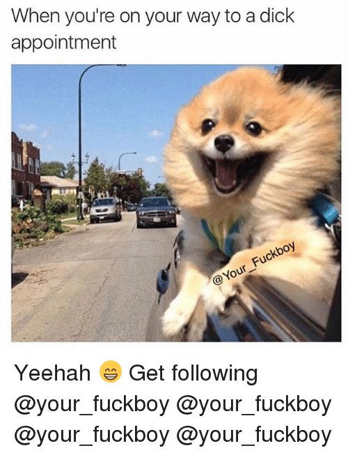 Fuckboy, Memes, and Dick: When you're on your way to a dick  appointment  @Your Fuckboy Yeehah 😁 Get following @your_fuckboy @your_fuckboy @your_fuckboy @your_fuckboy