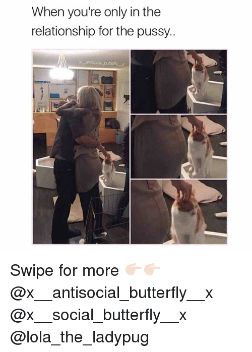 Memes, Pussy, and Butterfly: When you're only in the  relationship for the pussy.. Swipe for more 👉🏻👉🏻 @x__antisocial_butterfly__x @x__social_butterfly__x @lola_the_ladypug