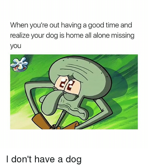 Being Alone, Good, and Home: When you're out having a good time and  realize your dog is home all alone missing  you I don't have a dog