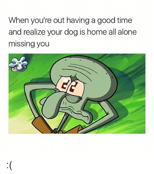 Being Alone, Good, and Home: When you're out having a good time  and realize your dog is home all alone  missing you :(