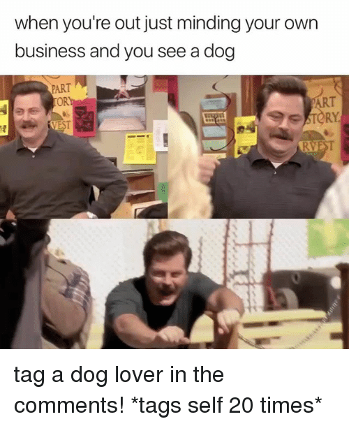Business, Relatable, and Dog: when you're out just minding your own  business and you see a dog  PART  OR tag a dog lover in the comments! *tags self 20 times*