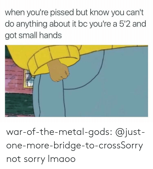 Small Hands: when you're pissed but know you can't  do anything about it bc you're a 5'2 and  got small hands war-of-the-metal-gods:  @just-one-more-bridge-to-crossSorry not sorry lmaoo