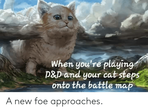 map: When you're pláying  P&D and your cat steps  onto the battle map A new foe approaches.