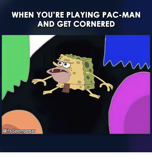 Memes, Pac-Man, and 🤖: WHEN YOU'RE PLAYING PAC-MAN  AND GET CORNERED  @itsSpongegar