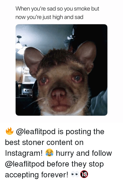 stoner: When you're sad so you smoke but  now you're just high and sad 🔥 @leaflitpod is posting the best stoner content on Instagram! 😂 hurry and follow @leaflitpod before they stop accepting forever! 👀🔞