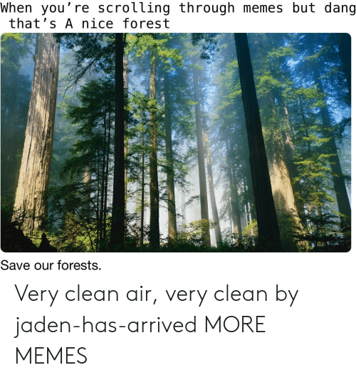 Thats A Nice: When you're scrolling through memes but dang  that's A nice forest  Save our forests. Very clean air, very clean by jaden-has-arrived MORE MEMES