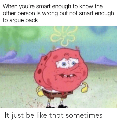 Just Be: When you're smart enough to know the  other person is wrong but not smart enough  to argue back It just be like that sometimes