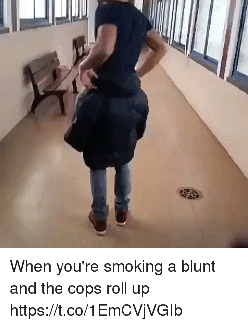 Memes, Smoking, and 🤖: When you're smoking a blunt and the cops roll up     https://t.co/1EmCVjVGIb