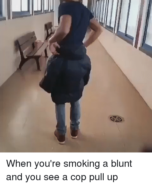 Blackpeopletwitter, Blunts, and Pull Ups: When you're smoking a blunt and you see a cop pull up