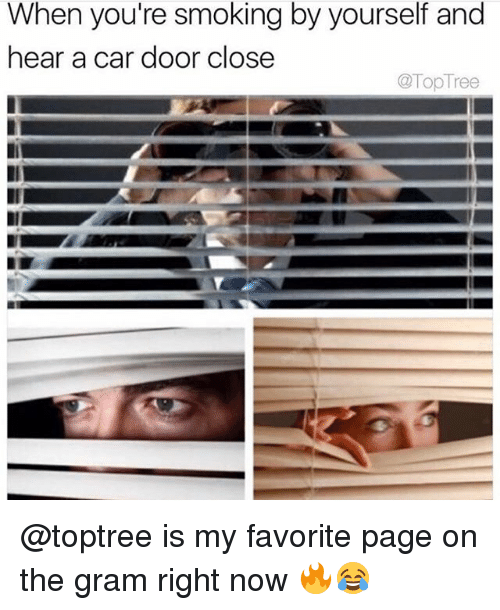 Smoking, Weed, and Marijuana: When you're smoking by yourself and  hear a car door close  @TopTree @toptree is my favorite page on the gram right now 🔥😂
